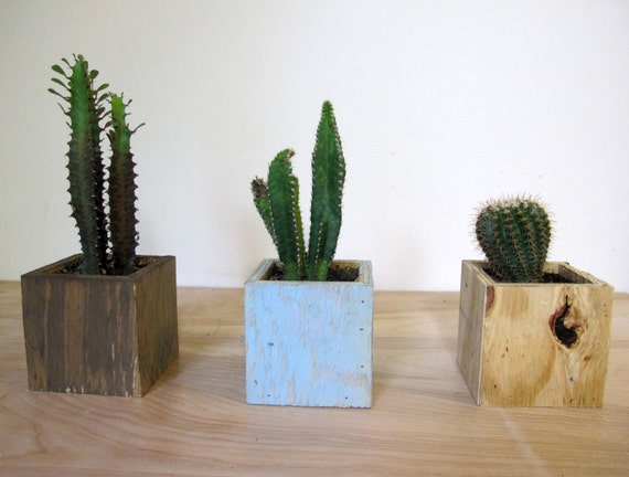 Items similar to wood planter box 4 x4 or 5 x5 succulent for Wooden cactus planter