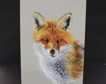 Fox watercolour Card