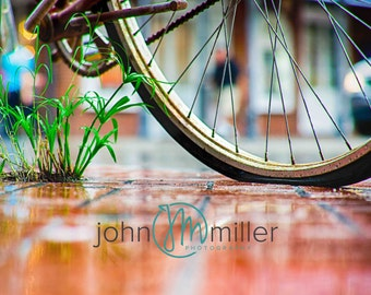 Bicycle Art, New Orleans Photography, Bike Print, New Orleans Art Print,  Bicycle (Bike) Wall Art, Bicycle (Bike) Home Decor,