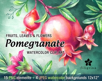Pomegranate fruit & flowers WATERCOLOR Clip Art design. 15 PNG floral elements, 4 background 12x12 digital scrapbook paper. Read about usage