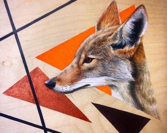 Geometric coyote
