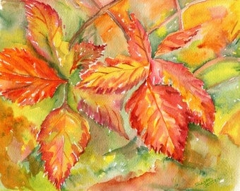 Fall Leaves Watercolors Paintings Original 8 x 10 Yellow, red, orange Autumn leaves watercolor wall art, Blackberry turning Leaves