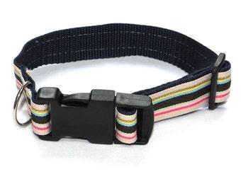 Rainbow Stripe Dog Collar - size Small/Medium