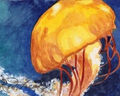 ACEO Chattanooga Jellyfish aquarium sea life ORIGINAL watercolor painting by Redstreake