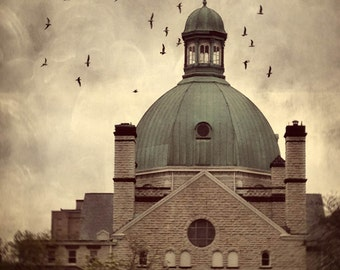 birds swarm migration urban building architecture photography church iPhoneography