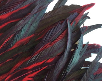 COQUE Tail Feathers Long  / Iridescent Flamenco Red / 173