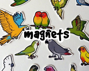 Parrot Decorative Fridge Magnets - Supporting CT Parrot Rescue - made to order