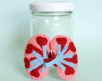 Kidneys in a Jar Felt Anatomical Specimen Anatomy Display Medical Decor