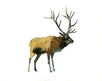 ELK Original watercolor painting 10x8inch