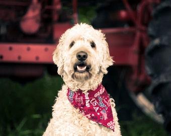 Dog Bandana,  Pet Scarf