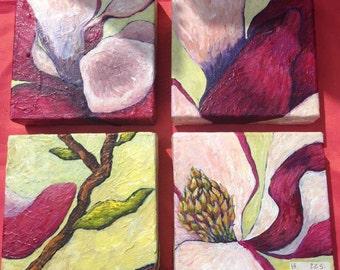 Magnolia in 4 parts