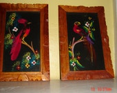 Mexican Folk Art - Bird Paintings with Feathers 1950s - beautiful
