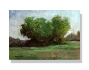 Oil Painting - Tree - Painting - Landscape Painting - Plein Air Painting - Canvas Painting: Trees - Fine Art Paintings by Carrie Venezia