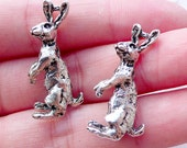 Silver Rabbit Charms / 3D Hare Pendant (2pcs / 14mm x 29mm / Tibetan Silver / 2 Sided) Bunny Animal Easter Jewelry Party Decoration CHM2209