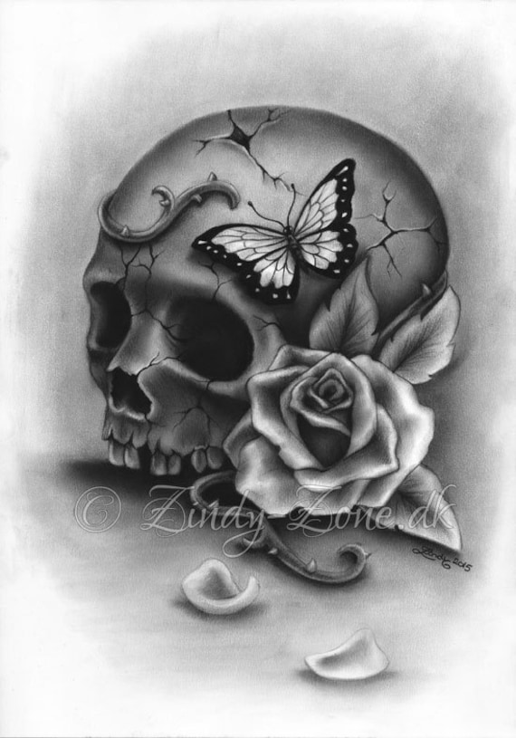 Roses And Butterflies Drawings Beauty and Deca...