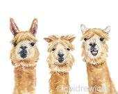 Llama Print - Watercolor Painting, 11x14 PRINT, Llama Art, Funny Illustration, Nursery Art, Hairstyles