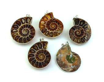 2pcs Large Ammonite Pendant - Spiral Shell Boho Findings - Fossil Pendant - Ammonite Fossil - Bohemian Pendant - Fossil Beads - Natural Bead