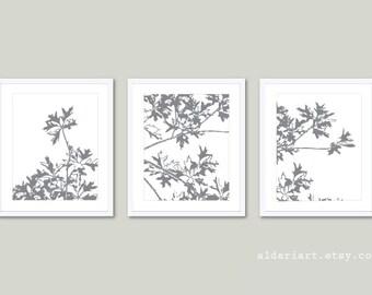 Autumn Tree Art Prints - Maple Tree Wall Art - Slate Gray and White - Modern Nature Art - Fall Decor - Tryptic Wall ArtAldari Art
