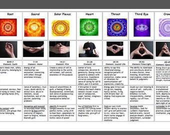 Chakra Chart Educational Laminated