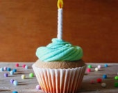 Felt Birthday Cupcake Mint