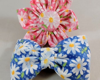Dog Flower, Dog Bow Tie, Cat Flower, Cat Bow Tie - Packed Daisies