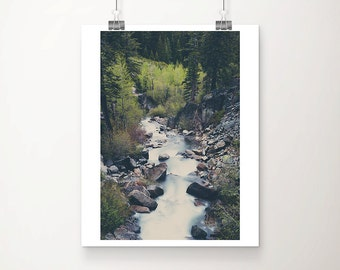 Lake Tahoe photograph Eagle Falls photograph woodland photograph woodland decor river photograph California photograph