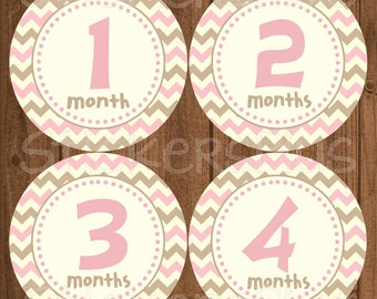 Monthly Baby Girl Stickers Baby Month Stickers Chevron Dots Pink Brown Bodysuit Stickers Monthly Baby Age Stickers Nursery Decor Photo