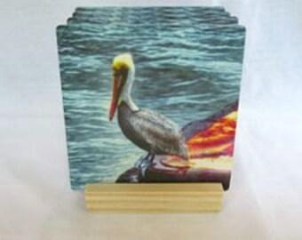Pelican Coasters -Sandstone Coasters - Absorbent Coasters - Pelican Home Decor - Home Decor Gift - Gift Idea -  Drink Coasters - Beach Decor