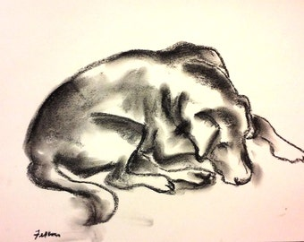 Doggie doodle #6.  Blind contour charcoal life drawings of my dogs.
