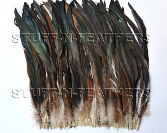 Wholesale / bulk feathers - Extra Long Half Bronze natural rooster tail coque feathers brown black iridescent / 13-16 in long / FB157-13