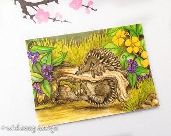 "Australian animal painting, echidna aceo art print, miniature art, miniature painting, cute animal ""Echidna Antics"" 2.5 x 3.5 inches"