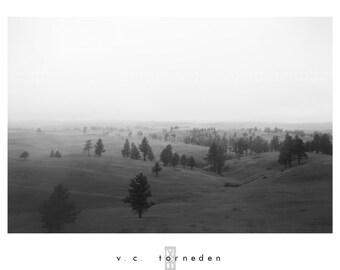 untitled, fine art black & white photographic print // black hills south dakota