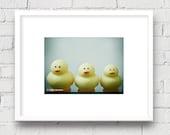 Playful Rubber Duckies: 5x7 Matted Photo, Kid's Room/Bathroom