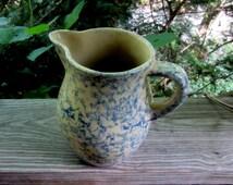 RRPC blue spongeware pitcher