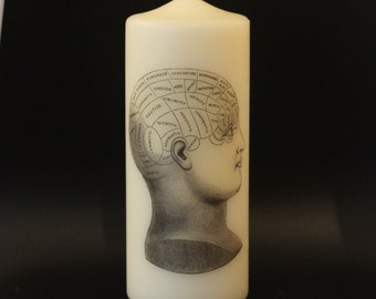Phrenology Head - Pillar Candle - Anatomical Decor