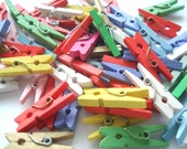 Tiny Craft Pegs Pack of 50 Multi Colour Pegs PG3 Mini Wood Craft Pegs