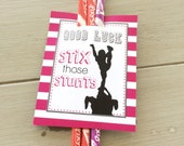 Cheerleading Good Luck Favor Tags, Cheer Gifts- PDF file Instant Download Stix Those Stunt, Pixie Stick Gift Tags