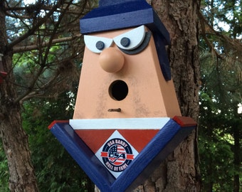 USA Brandy Hall Of Fame Birdhouse