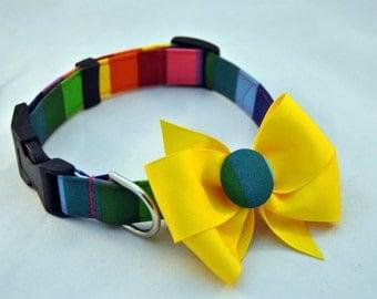 Rainbow Collar with Bow