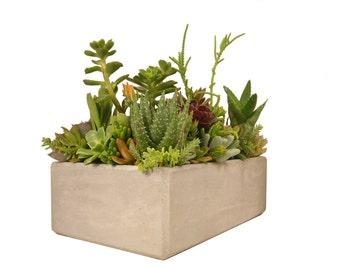 """Succulent Centerpiece Concrete Planter 12"""" x 8"""" Grey Rectangular Modern Minimalist Centerpiece Dish Garden Vessel Planter"""