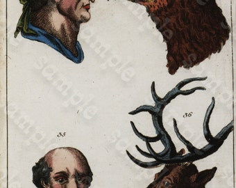 Antique Original human physiology Engraving by Wilhelm Tobias - Human faces - Bird faces