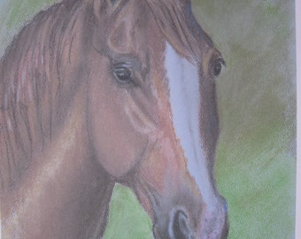 Bay Horse Portrait Print from  pastel
