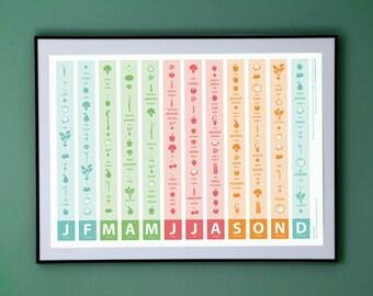 Seasonal Veg Colour Print (A2)