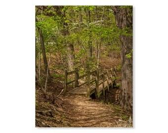 Dogwood Photo Etsy