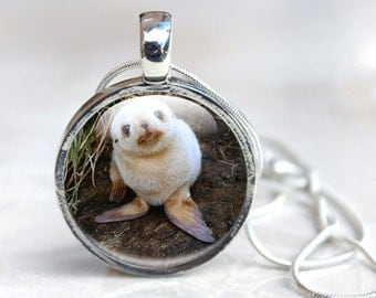 Seal Necklace - Baby Seal Necklace, Seal Photo Pendant - Seal Gifts for her - Seal Necklace Pendant - Baby Seal Jewellery (Seal 21)