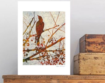 "Fine Art print, ""Remember the Song Birds? 8"" by Karyn Fendley"