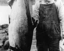 Alaska - Man Holding Life Size King Salmon (Art Prints available in multiple sizes)