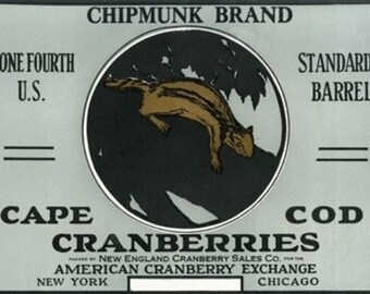 Cape Cod, Massachusetts - Chipmunk Brand Cranberry Label (Art Prints available in multiple sizes)