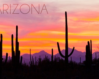 Arizona - Sunset and Cactus Photograph (Art Prints available in multiple sizes)