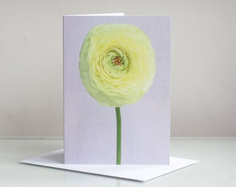 Photo greeting card, Photographic greeting card. Ranunculus Photographic Greeting Blank Card. Floral greeting card. Flower greeting card.